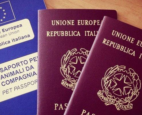 Passaporto per viaggiare all'estero con il tuo gatto